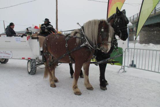 Promenade chevaux ste-anne-de-la-pérade